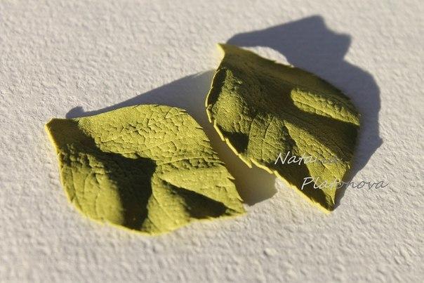 Из зеленого фоамирана вырезаем листики