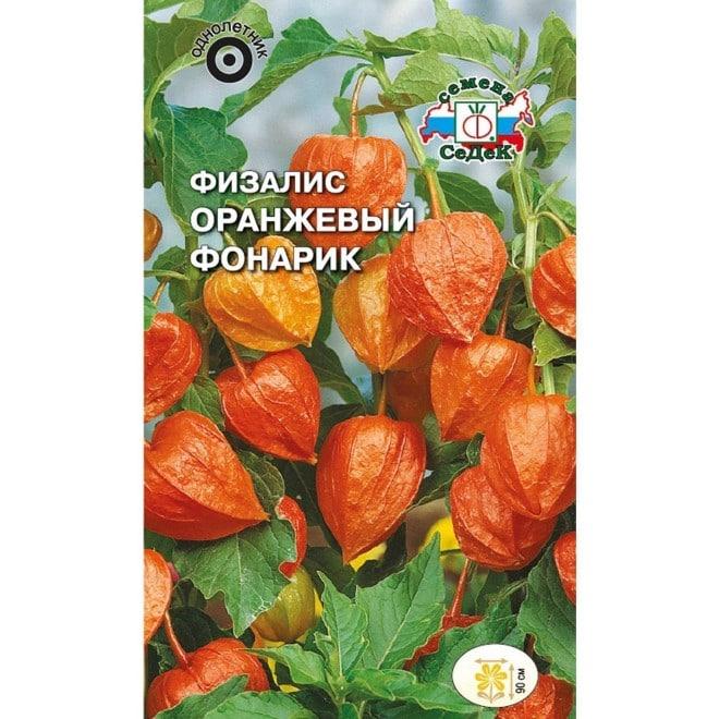Физалис Оранжевый фонарик